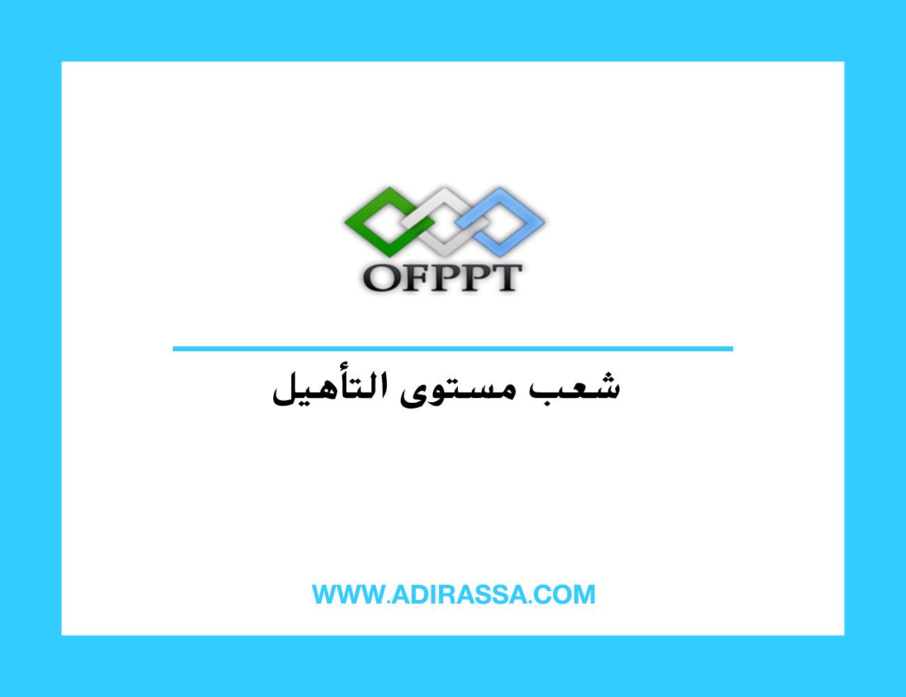 شعب مستوى التأهيل Qualification بالتكوين المهني حسب جهات المغرب ال 12