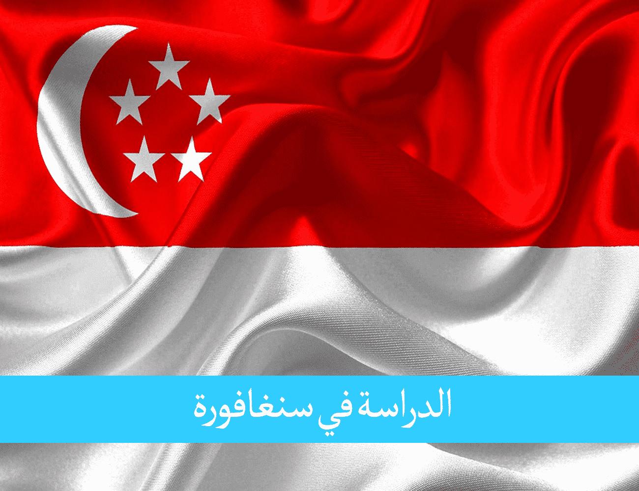 الدراسة في سنغافورة للمغاربة مدخل حياة مهنية في أسواق آسيا