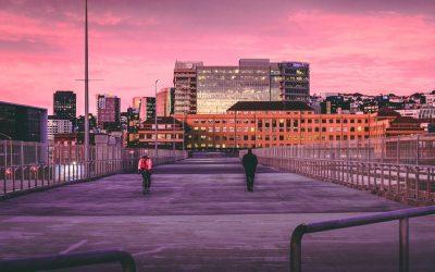 الدراسة والعمل في نيوزيلندا بلد الكيوي وجهة مثالية للتقدم بحياتك نحو الإزدهار